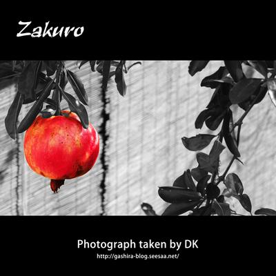 Zakuro.jpg